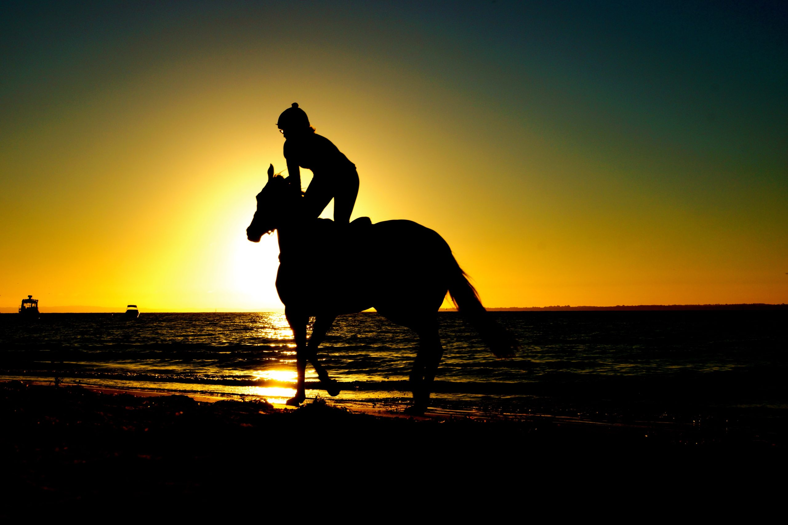 horseback rider silhouette riding on beach at sunset
